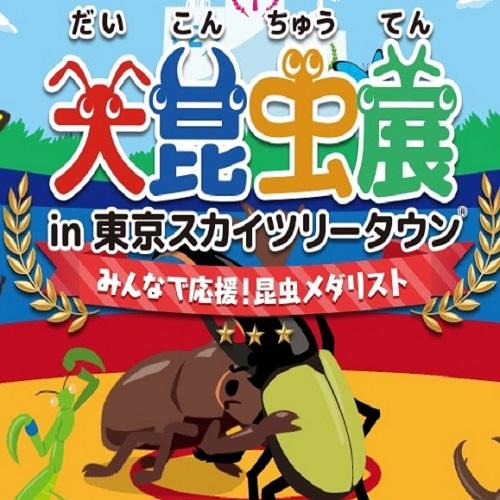 夏休み限定「大昆虫展 in 東京スカイツリータウン」親子チケット 1枚付きプラン♪無料朝食付♪