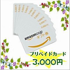 【アマゾン限定ギフト券3000】すぐに使えて便利!ギフト券(カードタイプ)プラン♪無料朝食付♪
