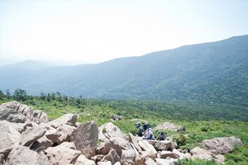 【山野草の宝庫】♪北上山系の美しさを満喫♪早池峰登山プラン 画像