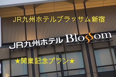 JR九州ホテル新宿開業記念プラン(素泊まり)
