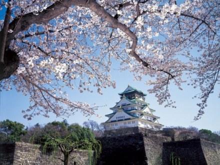 【京阪電車1日乗車券付】春うらら!そうだ!京都・大阪お花見ツアーに出かけよう!(朝食付) 画像