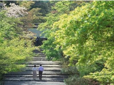 【連泊限定】ゆったり『京都』を楽しむ休日を♪連泊割引プラン<食事なし>  画像