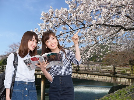 京都のパワースポット巡りに便利でお得な嵐電1日乗車券付プラン♪(食事なし) 画像