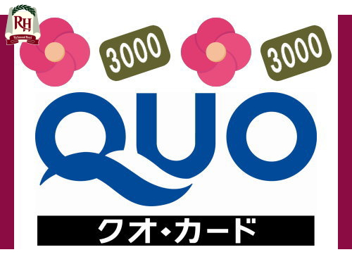 【出張応援!】QUOカード3000円分付プラン