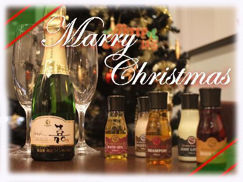 特別なクリスマスを大切な方と~スパークリングワイン付き~