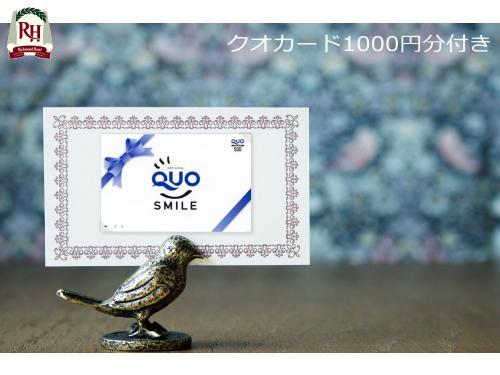 【QUOカード】コンビニでも使える1000円分QUO(クオ)カード付プラン