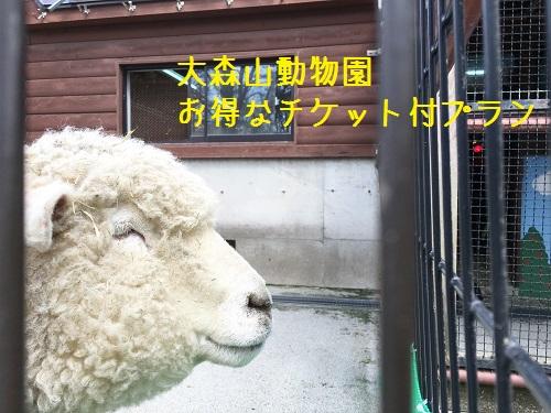「秋田市大森山動物園あきぎんオモリンの森」とってもお得な入場券付きプラン!素泊り