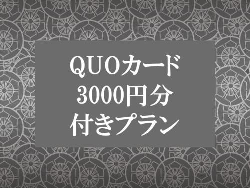 【QUOカード3000円付き】はたらくあなたを応援!ビジネスプラン 《食事なし》※GoTo対象外